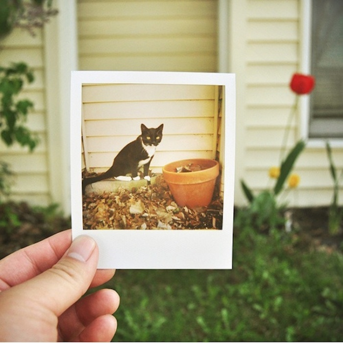 25-creative-polaroid-photos-4